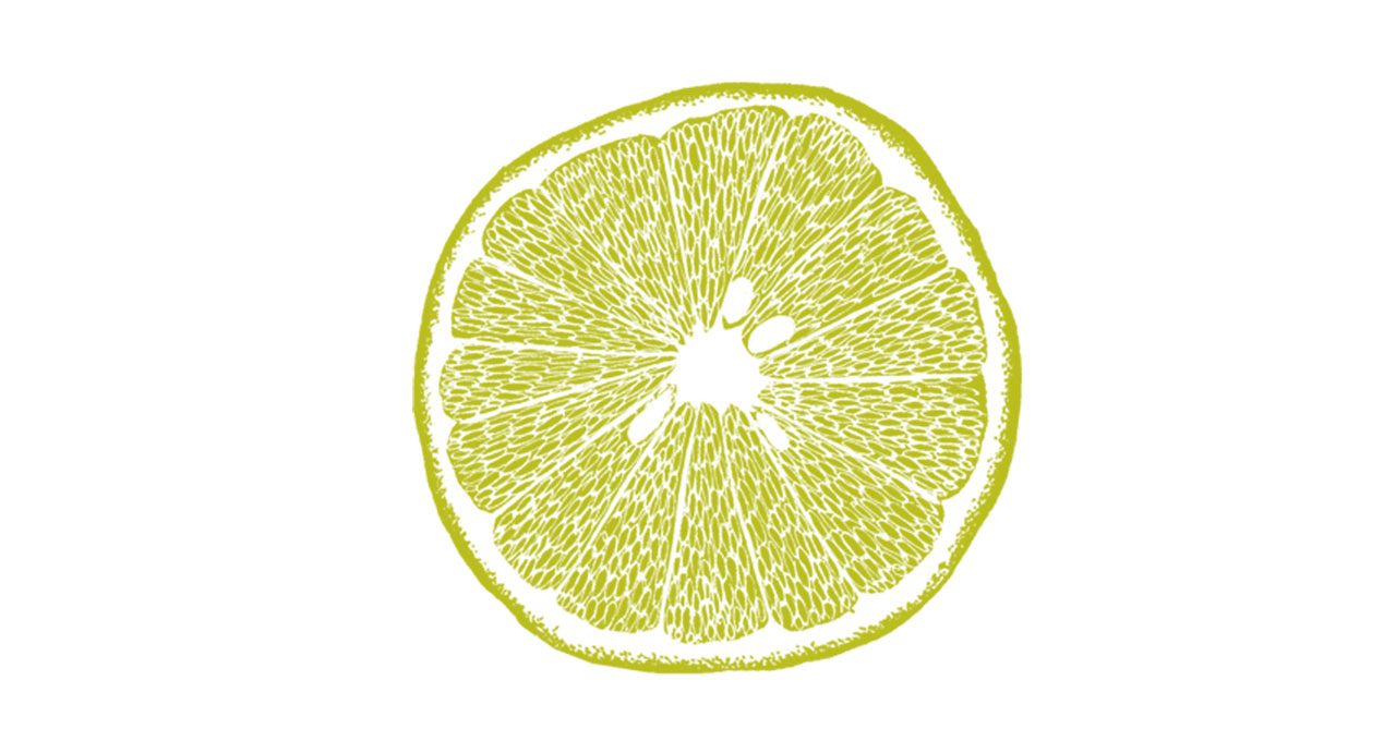 Grapefruit-Illustration